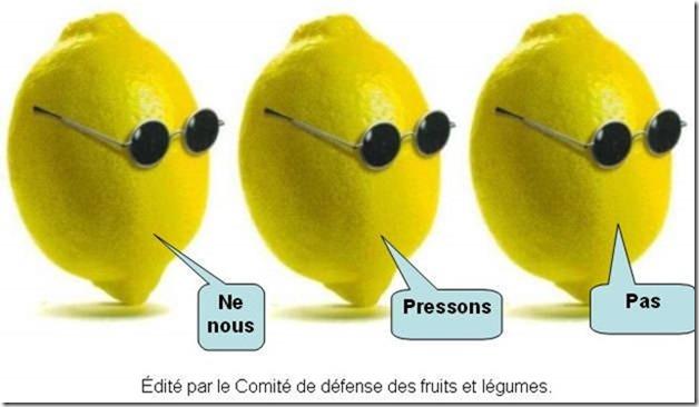 citrons3-1.jpg