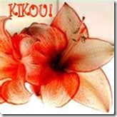 kikou-2520aj11-1-1.jpg