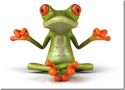 la-grenouille-1-1.jpg