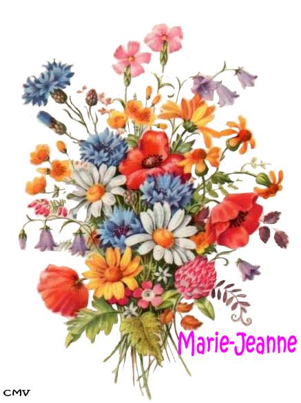 marie-jeanne-1-copie-5.png