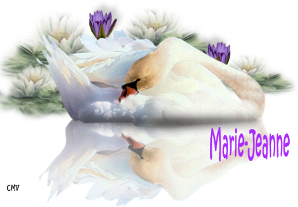 marie-jeanne-2-1-1.png