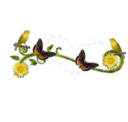 oiseaux-24-papillons-1.png