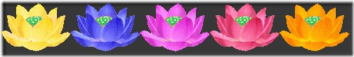 sepa-lotus-1-1-2.jpg